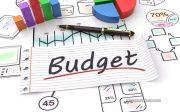 ngan-sach-budget-la-gi-cac-loai-ngan-sach-pho-bien-hien-nay